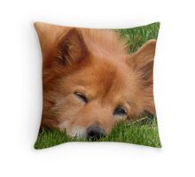 'I've Got My Eye On You...2' Throw Pillow