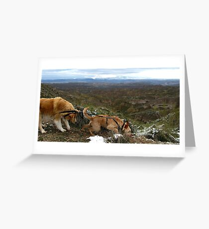 Stalemate in Gorafe, Spain Greeting Card