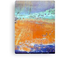 PiNcHeD Canvas Print