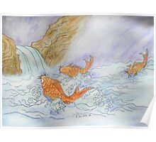 Koi in a Waterfall Poster