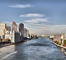 Looking North Up The East River by joan warburton