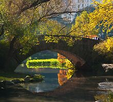Still Waiting For A Troll-Gapstow Bridge Central Park in Fall by Dave Bledsoe