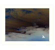 hope (clouded sky, white bird flying free) Art Print