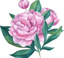 Watercolor Peony Bouquet by epine