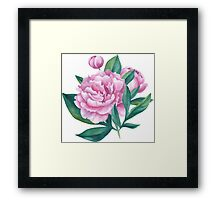 Watercolor Peony Bouquet Framed Print