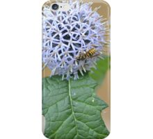 Thistle me a Wasp iPhone Case/Skin