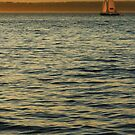 Sailing the Sound by Gary Lee Parker
