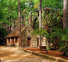 Big Wheel at Berry by Janie Oliver