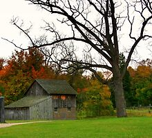 Outbuilding at de Laurier homestead by tanmari