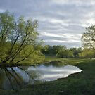 Wetland Spring by Jacob Routzahn
