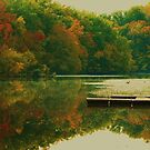 autumn morning reflection by ANNABEL   S. ALENTON