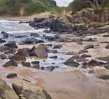 Transkei Coast by Warren. A. Williams