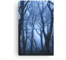 When the fog comes in Canvas Print