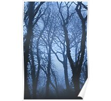 When the fog comes in Poster