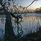 Early Spring On The Mighty Murray by FASImages