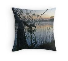 Early Spring On The Mighty Murray Throw Pillow