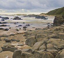 Transkei Coastal  by Warren. A. Williams