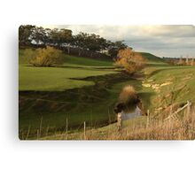 Green Pasture,Daylesford District Canvas Print