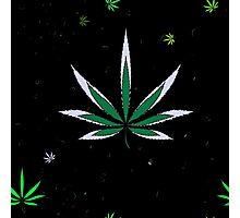 Colorful Marijuana Leaves Photographic Print