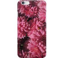 Spot the ladybird iPhone Case/Skin