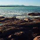 Waterscape: Windang Island View by Vanessa Pike-Russell
