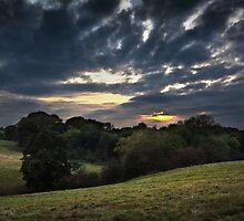 Autumn Sunday Evening (Watching The Light Draw In) by Andy Freer