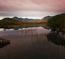 Rannoch Moor by Martina Cross