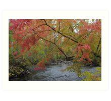 Autumn at the Huron River Art Print