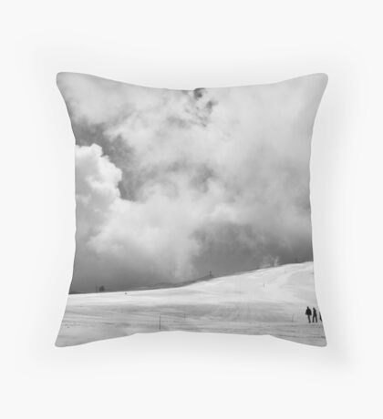 Through the icy wilderness Throw Pillow