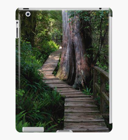 Big Tree Trail iPad Case/Skin