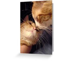 Kisses Greeting Card