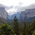 yosemite valley by Bruce  Dickson