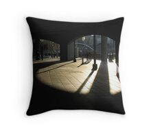 Late Sun Under Cover Throw Pillow