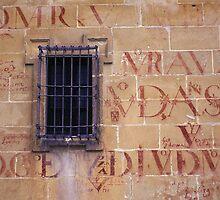 Window on Facade of Seminary of San Felipe Neri in Baeza, Spain by Petr Svarc