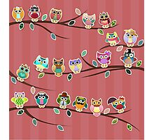 Cute Owls on Branches with Stripes Photographic Print