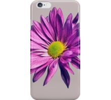 Purple daisy iPhone Case/Skin