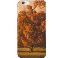 Fall Tree iPhone Case/Skin