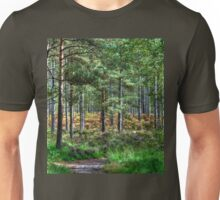 Forest Walk in the New Forest, Hampshire, England Unisex T-Shirt