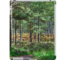 Forest Walk in the New Forest, Hampshire, England iPad Case/Skin
