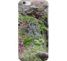 Mossy Stump iPhone Case/Skin