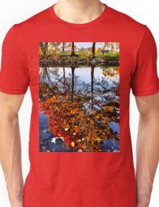 Boston, Fall Reflection  Unisex T-Shirt