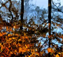 Boston, Fall Reflection  Sticker