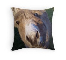 Curious Donkey Throw Pillow