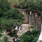 Nilgiri Mountain Railway - India by Siju Doniston