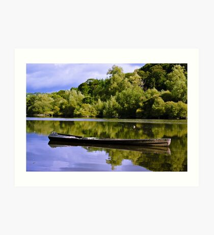 fishing cot, River Nore, Inistioge, County Kilkenny, Ireland Art Print