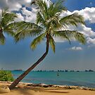 Oh, island in the sun.....! by Adri  Padmos