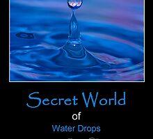 Secret World by Trudy Wilkerson