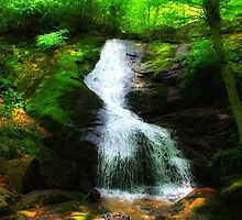 Crabtree Falls 1 by virginian