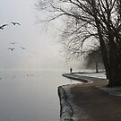 Linlithgow Loch January by idgoodall