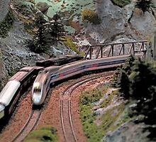 Dundee Model Railway Exhibition by Forfarlass